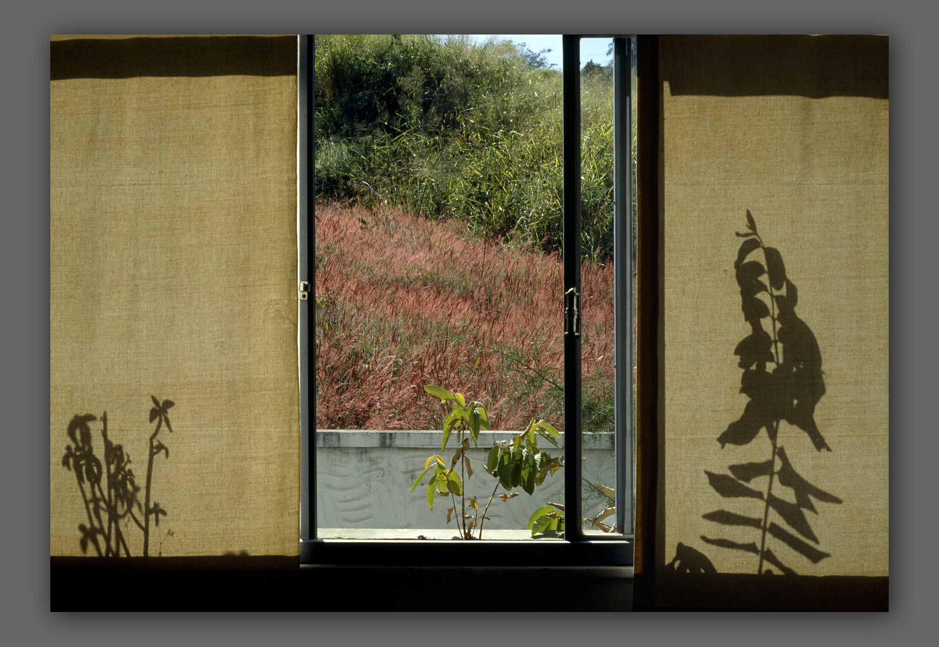"""Pampulha window - from the """"Home"""" series"""